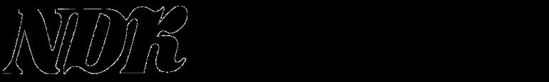 NDK-日本電算企画株式会社ロゴ